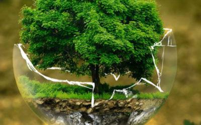 Démarche développement durable